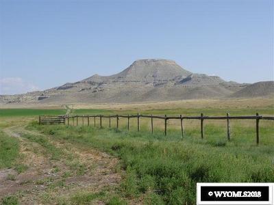 Dubois,  Kinnear,  Crowheart, Pavillion Farm & Ranch For Sale: 1133 Burris Lenore