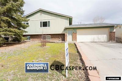 Casper Single Family Home For Sale: 6590 Village