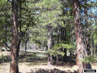 Douglas Residential Lots & Land For Sale: 33 Pineview