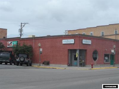 Evanston Commercial For Sale: 1001 Front Street