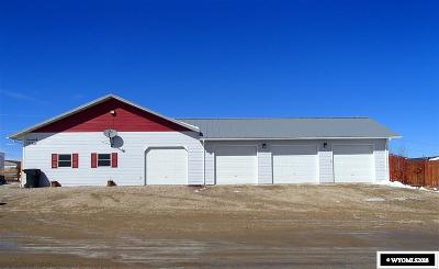 Buffalo Single Family Home For Sale: 231 Birch