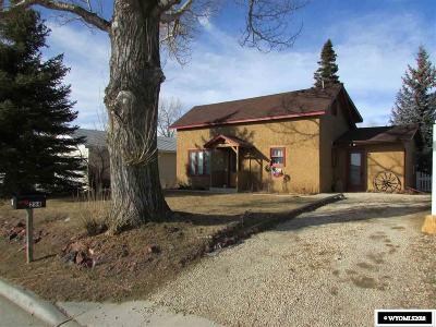 Buffalo Single Family Home For Sale: 234 Williams