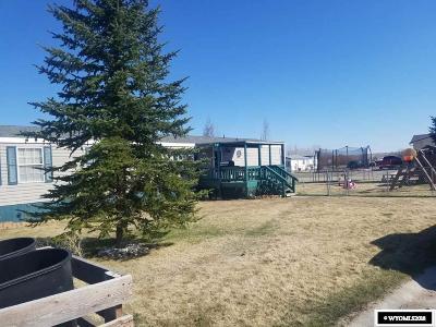 Buffalo Single Family Home For Sale: 201 Ceci
