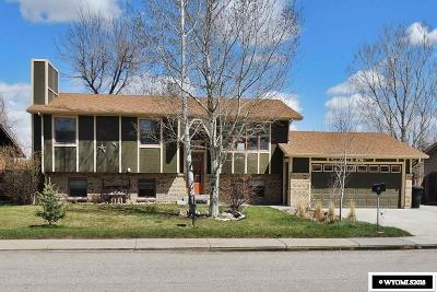 Casper Single Family Home New: 161 Indian Paintbrush