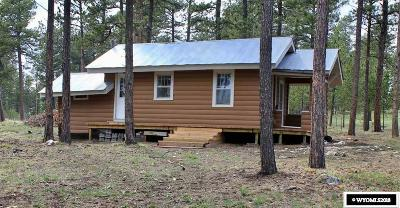 Douglas Single Family Home For Sale: 90 Third
