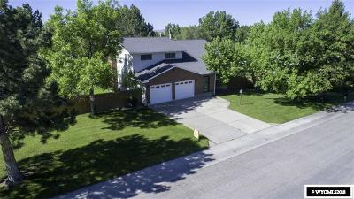 Douglas Single Family Home For Sale: 1261 Birch