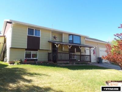 Evanston Single Family Home For Sale: 243 Hansen Ave
