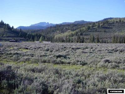 Residential Lots & Land For Sale: Lot 85 Long Creek Subdivision