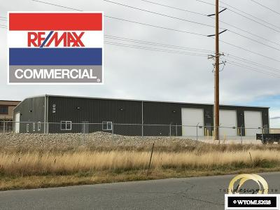 Evansville Commercial For Sale: 252 Blackmore