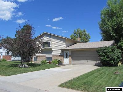 Douglas Single Family Home For Sale: 233 S Wind River