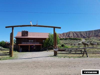 Dubois,  Kinnear,  Crowheart, Pavillion Single Family Home For Sale: 1404 Warm Springs