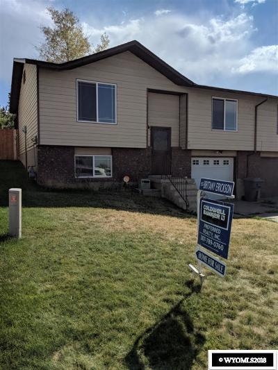Evanston Single Family Home For Sale: 117 Barrett Ave.
