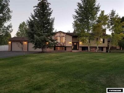 Evanston Single Family Home New: 217 Washakie