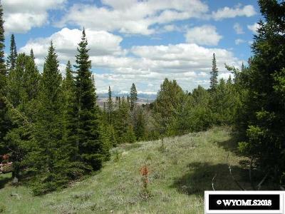 Dubois,  Kinnear,  Crowheart, Pavillion Residential Lots & Land For Sale: 42 Lookout