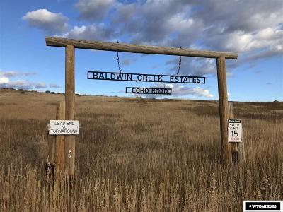 Lander Residential Lots & Land For Sale: Lot 16 Baldwin Creek Estates