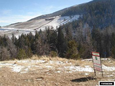 Dubois,  Kinnear,  Crowheart, Pavillion Residential Lots & Land For Sale: 216 Soda Springs