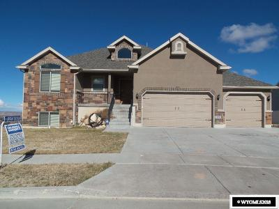 Evanston Single Family Home For Sale: 119 Alecias Way