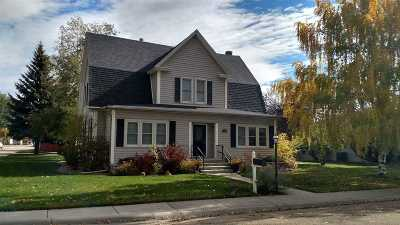 Buffalo Single Family Home For Sale: 297 N Adams Avenue