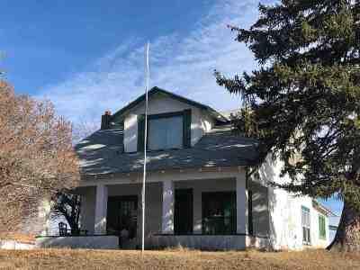 Buffalo Single Family Home For Sale: 377 Cummings