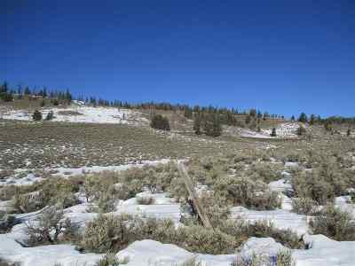 Residential Lots & Land For Sale: Lot 66 Long Creek Subdivision