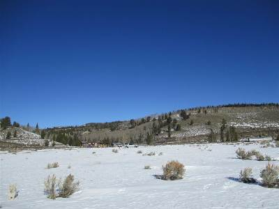 Residential Lots & Land For Sale: Lot 63 Long Creek Subdivision