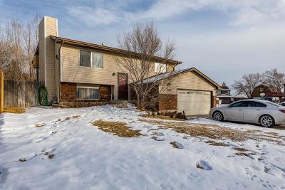 Rock Springs Single Family Home For Sale: 2004 Century Blvd.