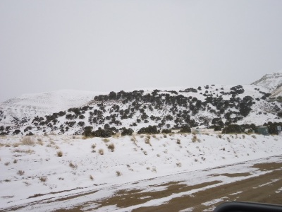 Rock Springs Residential Lots & Land For Sale: #25 Cattle