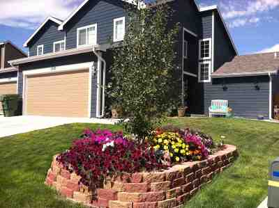 Douglas Single Family Home New: 1230 Meadow