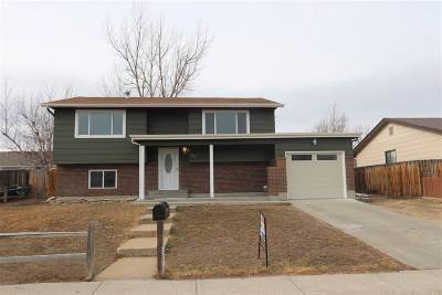 Casper Single Family Home New: 3116 Herrington