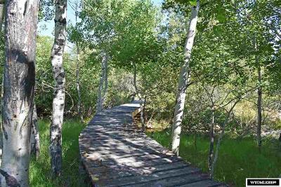 Lander Residential Lots & Land For Sale: 12 North Fork Valley