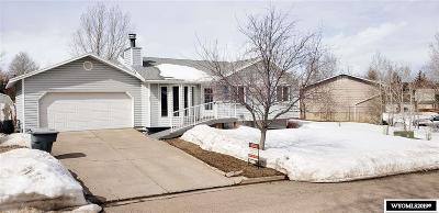 Evanston Single Family Home For Sale: 407 Hickey