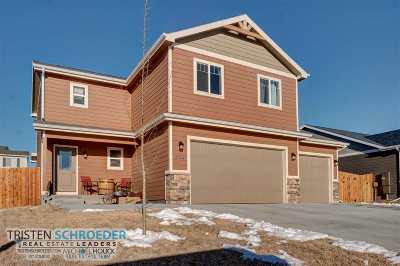 Casper Single Family Home For Sale: 3144 Indian Scout