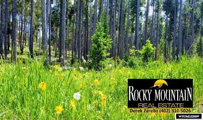 Casper Residential Lots & Land For Sale: 2419 Lodgepole