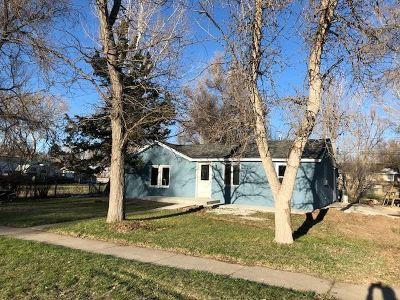 Douglas Single Family Home For Sale: 937 S 5th