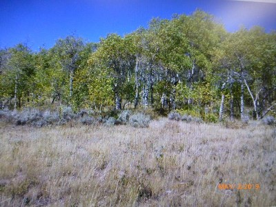 Kemmerer Residential Lots & Land For Sale: Lot 100 Unit C-2 Commissary Ranch