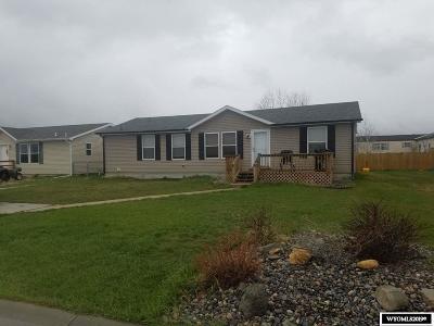 Buffalo Single Family Home For Sale: 133 Tamari Drive