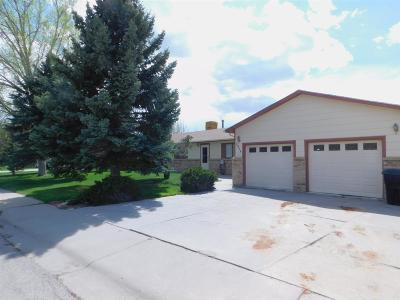 Casper Single Family Home For Sale: 3910 S Oak