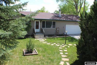 Douglas Single Family Home For Sale: 1251 Birch