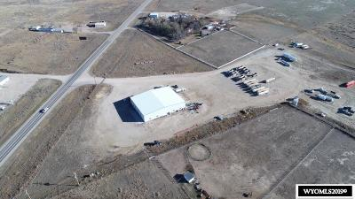 Douglas Commercial For Sale: 210 St Hwy 59