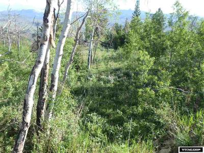 Residential Lots & Land For Sale: 303 Union Pass