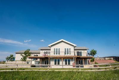 Buffalo Single Family Home For Sale: 361 Trabing Road