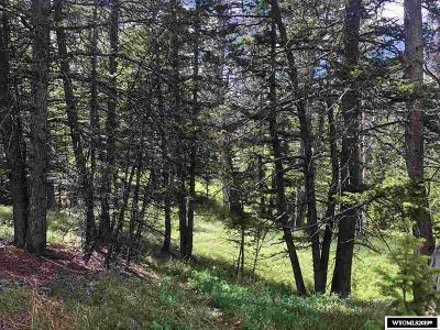Residential Lots & Land For Sale: 106 Porcupine