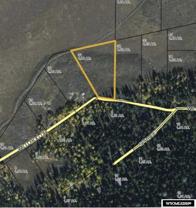 Dubois,  Kinnear,  Crowheart, Pavillion Residential Lots & Land For Sale: Lot 31 Long Creek Subdivision