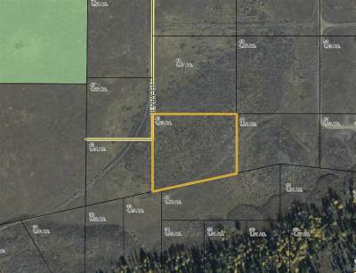 Residential Lots & Land For Sale: Lot 43 Long Creek Subdivision