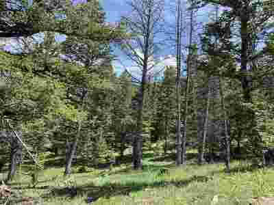 Residential Lots & Land For Sale: Tbd Tract 1 Starry