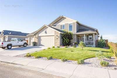 Douglas Single Family Home For Sale: 987 Eagle