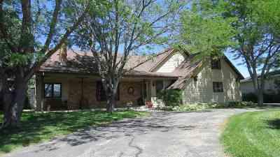Lander Single Family Home For Sale: 233 Mount Arter Loop