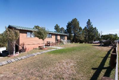 Pine Haven Single Family Home For Sale: 194 Pine Haven Rd