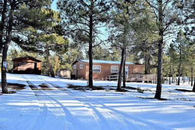 Pine Haven Single Family Home For Sale: 4 Elm Ct