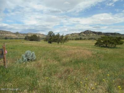 Residential Lots & Land For Sale: Lower Powder River Road